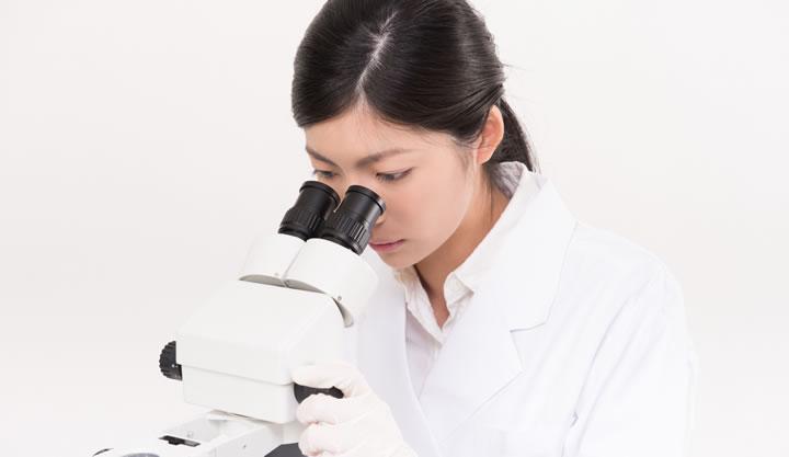 保存料と腸内細菌