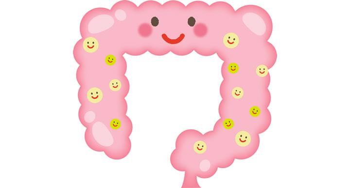 腸内細菌と腸内フローラ