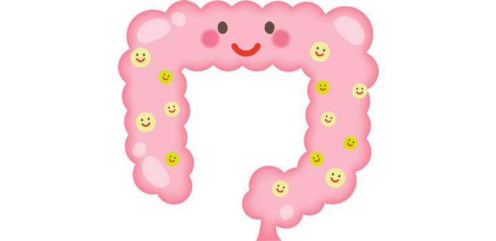 腸内細菌は100兆~1000兆個