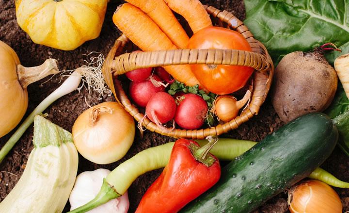 野菜の力、ファイトケミカル